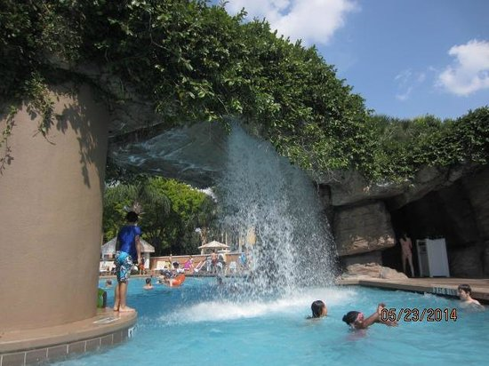 Sheraton Vistana Resort - Lake Buena Vista : Cascades Pool Waterfall
