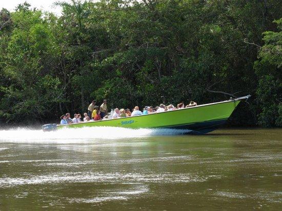 Chukka Caribbean Adventures in Belize: River Wallace - CHUKKA