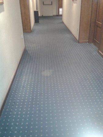 Tryp Hotel Rincon de Pepe: corredor