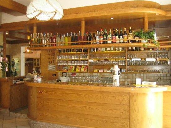 Albergo Alpino: Bar