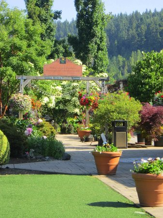 Sumner, WA: Windmill Garden