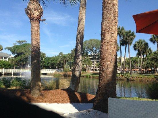 Sonesta Resort Hilton Head Island : Strolling the gardens on our way to the beach