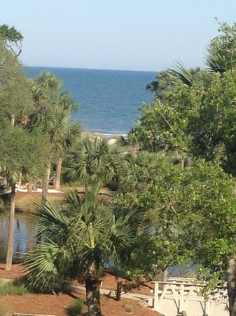 Sonesta Resort Hilton Head Island : View of the gardens, ocean beyond from our room