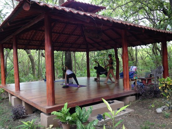 Shaka Beach Retreat : Yoga lesson!!