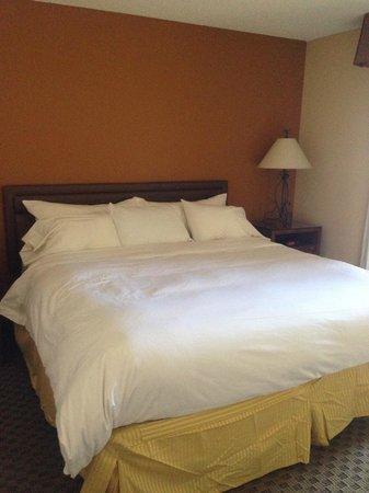 Radisson Suites Tucson: Bed