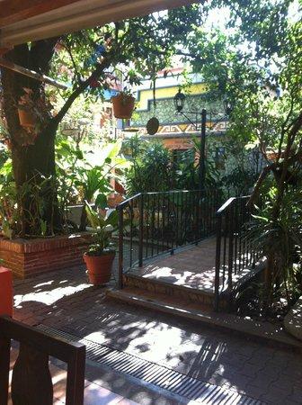 Hotel Casa Arnel: Muchas plantas