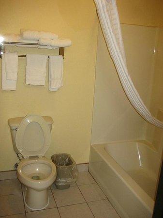 Best Western Plus Midwest Inn & Suites: Bathroom was clean with adequate supply of towels