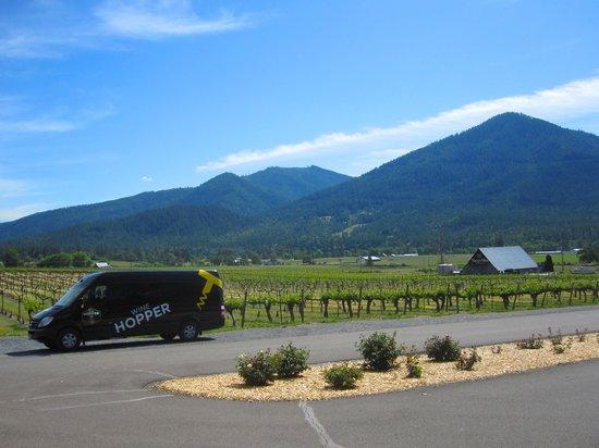 Wine Hopper Tours: Valley View Vineyard
