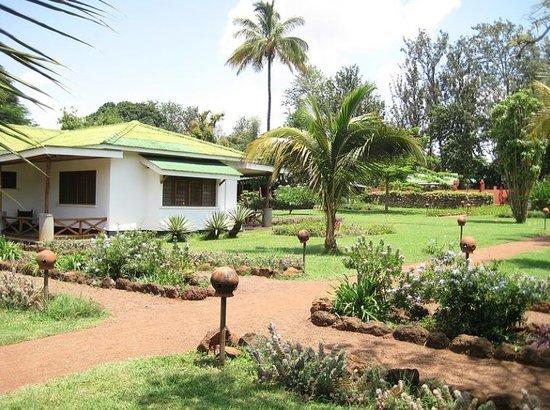 Ameg Lodge Kilimanjaro : Rooms