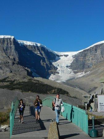 The Glacier View Inn: Athabasca Glacier