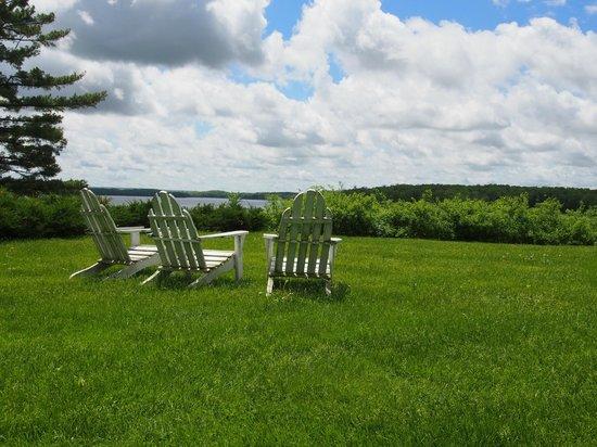 Stout's Island Lodge : Lounge Area