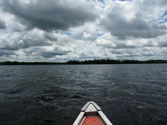 Stout's Island Lodge : Lake View