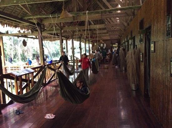 Tambopata Research Center: The hammock hallway.