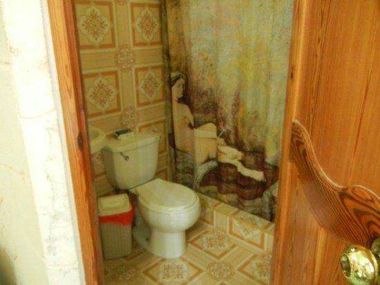 Casa Colonial Yadilis y Joel: Baño de la habitacion