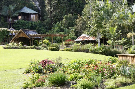 Secrets on the Lake : View of Possums cabin and surrounding gardens