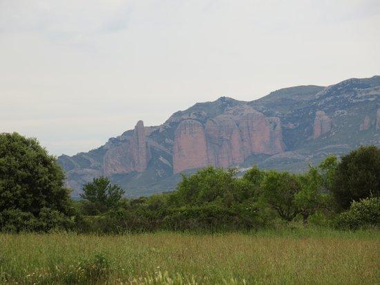 Alen d'Aragon: Our Room's View
