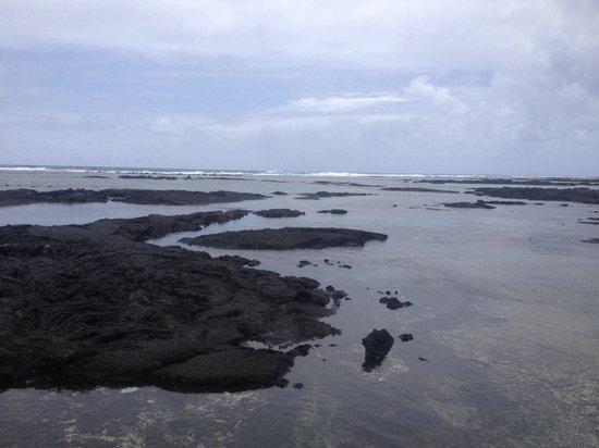 Kapoho Tide Pools: Endless pools