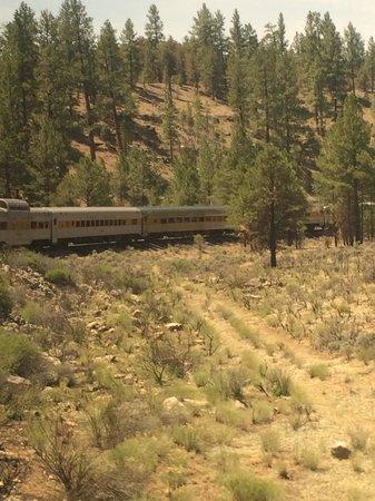 Grand Canyon Railway: View