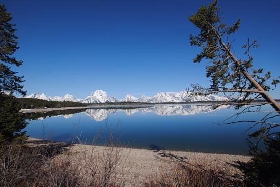 Jackson Hole Eco Tour Adventures : DY Jackson Lake