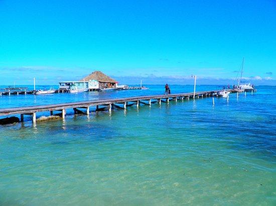 Paradise Villas: dock