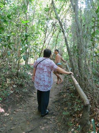 Reserva Pataxo da Jaqueira : O início da visita é uma trilha gostosa no meio da mata
