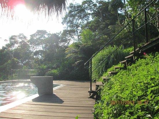 Hamadryade Lodge: Acceso a la piscina