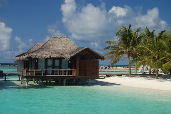 Anantara Veli Maldives Resort: pic of resort