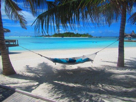 Anantara VeliMaldivesResort: hammock