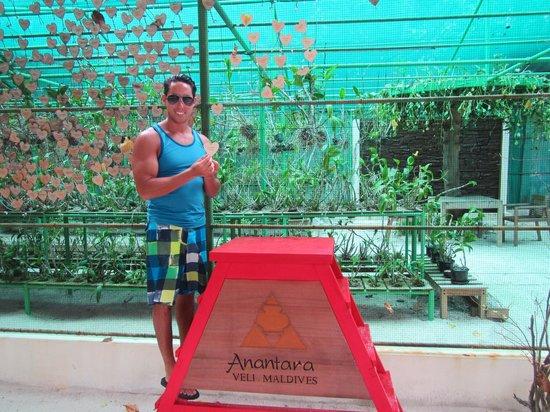 Anantara Veli Maldives Resort: orchid garden with honeymooner's hearts on the wall