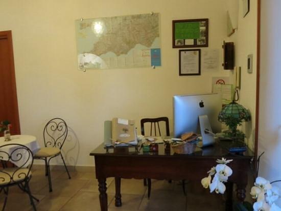 Nido Verde: welcome desk