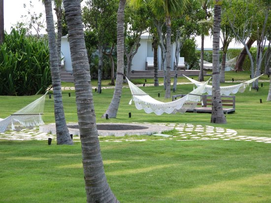 The Cove Eleuthera: the hammocks