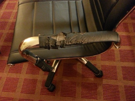 Comfort Suites Rock Hill : chair chewed by coyotes