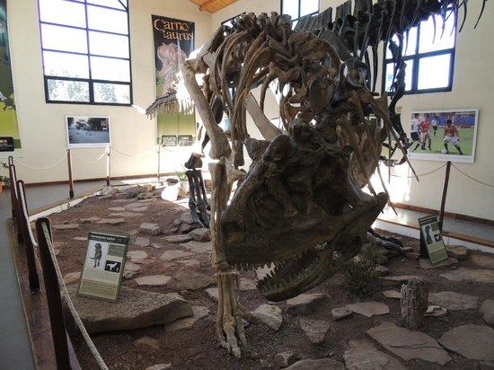 Villa El Chocon, Argentina: museo