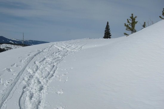 Devil's Thumb Ranch Cross Country Skiing: and you pay $20/day for poor or no grooming