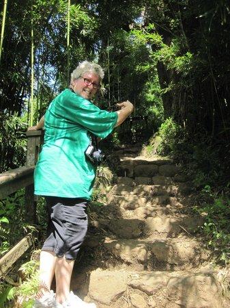Pipiwai Trail : I did it!