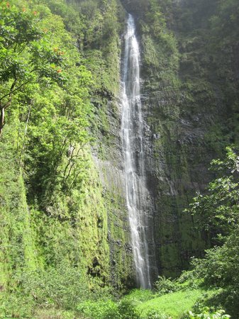 Pipiwai Trail : Payoff at the end of the hike.