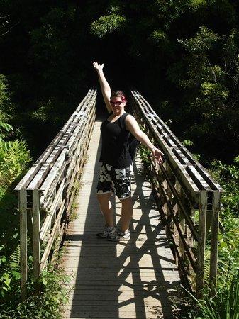 Pipiwai Trail : Bridge on the trail
