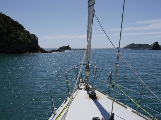 Explore - Bay of Islands: On board the Lion