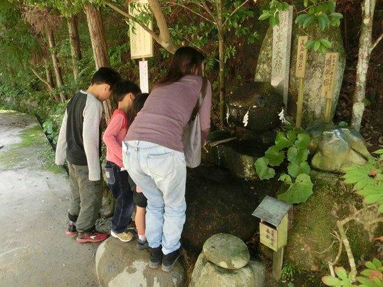 Tamatsukuriyu Shrine : 願い石