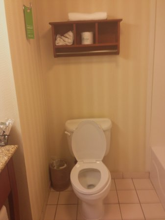 Hampton Inn Metairie : toilet