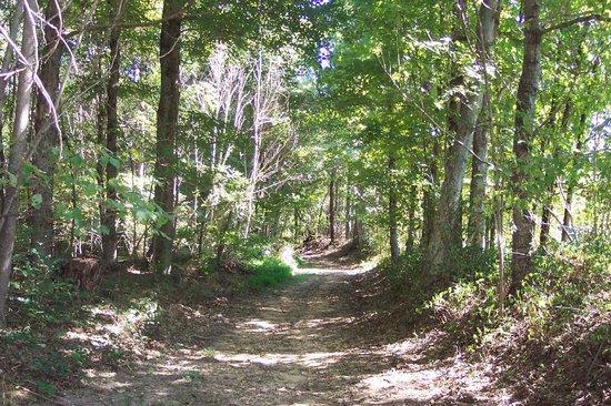 Natchez Trace Parkway: Natchez Trace Trail