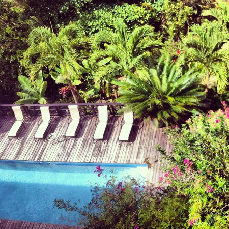 Villa Pomme d'Amour: View of the pool