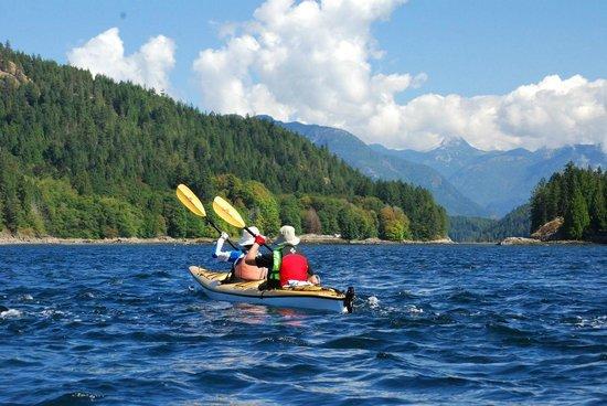 Go Flow With Flow Kayak Adventures: Kayaking through B.C.'s Discovery Islands