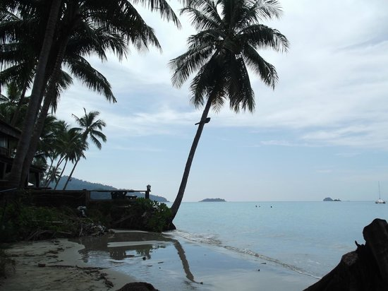 Khlong Prao Beach: Пляж, море, пальмы...