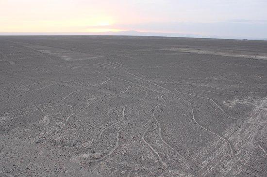 Torre Mirador de Las Lines de Nasca: Nazca Lines from Mirador