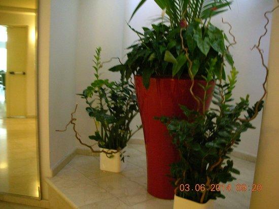 Enea Hotel Aprilia: Composizioni floreali