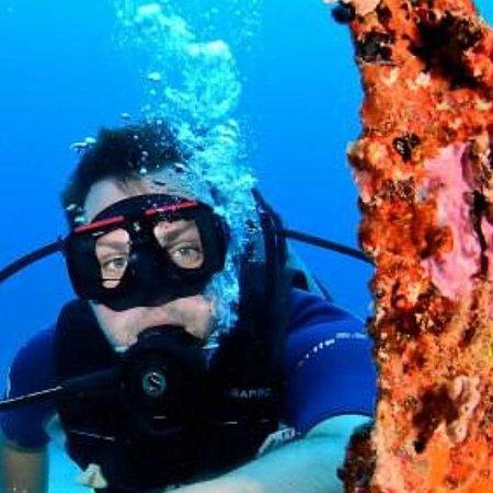 Ocean Explorers Dive Center: On the shipwreck site