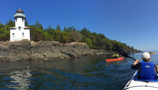 Discovery Sea Kayaks : On the water near Lime Kiln State Park