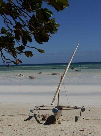 Promised Land Lodge : beach