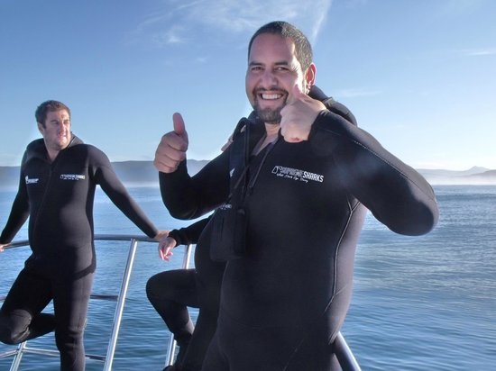 Shark Cage Diving South Africa: Just before going in